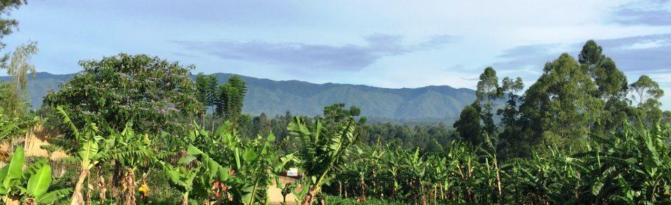 Journey Uganda